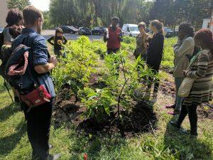 Une formation dans un jardin de Paysage Solidaire